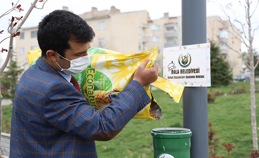 Sokak Hayvanları Besleme Noktası